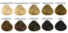 International Colour Charts for Hairdressing - Hair and Makeup Artist Handbook