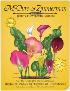 McClure & Zimmerman Spring 2016 catalog Rare Flowers, Bulb Flowers, Garden Seeds, Planting Seeds, Garden Bulbs, Seed Catalogs, Carnivorous Plants, Small Farm, Zimmerman