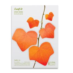 Ivy Sticky Note L Red 4Pk by b.b.begonia