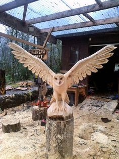 chainsaw art                                                                                                                                                                                 Mehr