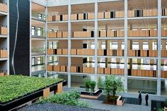 Stunning Green Atrium Brings it All Together - Landscape Architects Network
