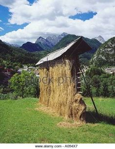 Slovenia village meadow hay drying Studor Toplar Drying-Frame agriculture farming culture - Google 検索