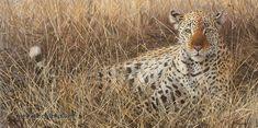 EYE OF THE HUNTER    Not Just Wildlife Art of John & Suzie Seerey-Lester