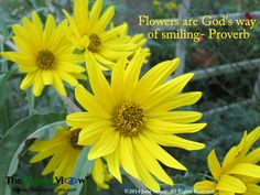 Flowers are God's way of smiling- Proverb