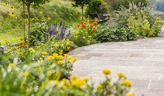 Sidewalk, Plants, Welcome, Side Walkway, Sidewalks, Planters, Pavement, Walkways, Plant