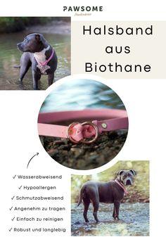 Zugstopphalsband | Biothane | Halsband | Hundehalsband | Pawsome Sports, Dog Accessories, Hs Sports, Sport