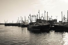 Fishing Boats - New Bedford Pier 3 by Andrea Anderegg