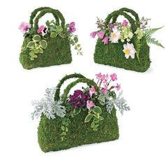 Super Moss 55500 Deco Purses Beaumont, Pack of Moss Basket (set of - Whether you use it indoors or out, this beaumont sphagnum moss basket is the perfect way to show off cut flowers or potted plants. Shaped like a traditional handbag, it is Deco Floral, Arte Floral, Floral Design, Flower Bag, Flower Pots, Garden Crafts, Garden Art, Mosses Basket, Dish Garden