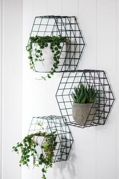 wohnideen-kitchen-shelves-from-wired-flower pots-GREETINGS-plant-white-wall - Apartment Decor Ideas Diy Wall Shelves, Kitchen Shelves, Kitchen Decor, Kitchen Ideas, Entryway Shelf, Rental Kitchen, Design Kitchen, Diy Kitchen, Diy Home Decor On A Budget