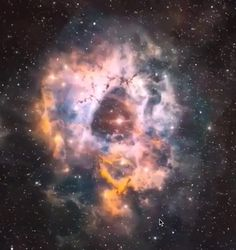 Rosette Nebula, a 110 light-year-wide star factory hosting more than young stars. The Rosette Nebula, a 110 light-year-wide star factory hosting more than young stars. Planets Wallpaper, Galaxy Wallpaper, Nebula Wallpaper, Space Planets, Space And Astronomy, Hubble Space, Space Telescope, Galaxy Space, Galaxy Art