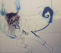 Akihabara Princess: Cosplay felino