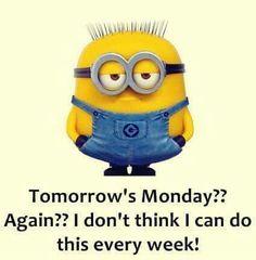 Yep! Funny Minion Pictures, Funny Minion Memes, Minions Quotes, Funny Relatable Memes, Funny Texts, Funny Jokes, Minion Sayings, Hilarious, Minion Humor