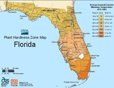 Florida Planting Zone Map Small