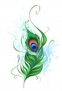 About a peacock tattoo.