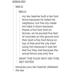 Is your teacher's neighbor STEVE CARLSBERG? Because then I would totally understand the lengths he went to --- funny Funny Cute, Really Funny, Hilarious, All Meme, Stupid Funny Memes, Funny Tumblr Posts, Funny Stories, Random Stuff, Funny Stuff