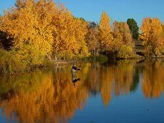 Fly Fishing - Colorado, USA