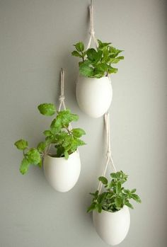 29 Cute Houseplant Decoration Ideas will Beautify Your Room