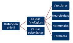 diabetes tipo 1 causas fisiológicas de impotencia