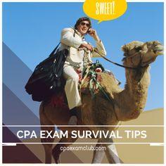 CPA Exam Survival Tips http://cpaexam.tumblr.com #cpaexam #cpasuccess