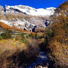 Les mélèzes font de la résistance ! #Automne #Alpes