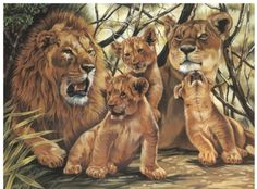 Paint By Number Kit – Pride of Lions « Blast Groceries Beautiful Cats, Animals Beautiful, Animals And Pets, Cute Animals, Lion Pride, Pride Of Lions, Lion Family, Lion Love, Paar Tattoos