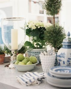 Potted plants arranged amongst blue-and-white dish wares and a silver hurricane vase.