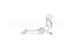 Ab stretch exercise guide with instructions, demonstration, calories burned and muscles worked. Learn proper form, discover all health benefits and choose a workout. http://www.spotebi.com/exercise-guide/ab-stretch/