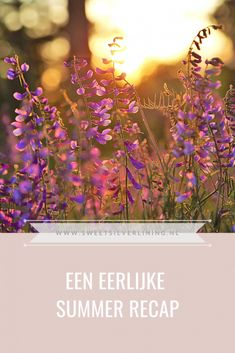 Silver Lining, Dutch, Sweet, Summer, Blog, Candy, Summer Time, Dutch Language, Blogging