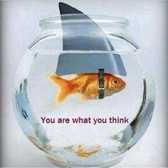 Eres lo que piensas, luego ¡ten cuidado con lo que piensas! #alimentatubienestar