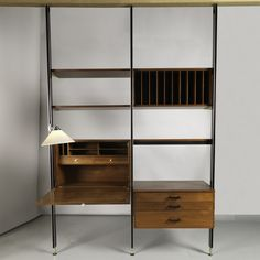Comprehensive Storage System (CSS) Wall Unit, ca. 1960; Designed by George Nelson (American, 1907 – 1986); USA; teak, brushed stainless steel, chromed metal, iron, painted metal, plastic (lamp shade); Frame H x W x D: 243.8 x 172.7 x 35.6 cm (8 ft. x 5 ft. 8 in. x 14 in.); Gift of Susan Kasakove; 2013-41-1-a/r
