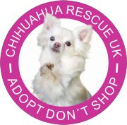 NOW ON SALE……Car stickers each or 2 stickers for Show your support for Chihuahua Rescue UK by proudly… read more → Little Dogs, Big Dogs, Large Dogs, Chihuahua Rescue, Chihuahua Puppies For Sale, Baby Gates, Loyal Dogs, Love And Respect, Great Stories