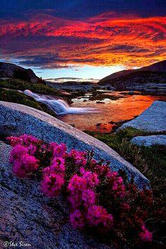 Eastern Sierra.. Lake Sunrise ❤