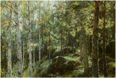 ЮРИЙ ВАСЕНДИН, архангельский художник – 196 фотографий   ВКонтакте Солнечный день в лесу,Финляндия