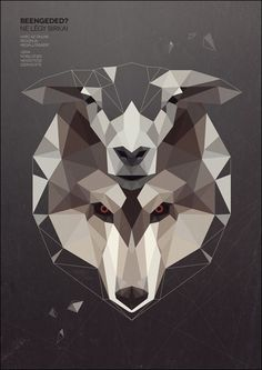 wolf-in-sheep-skin-