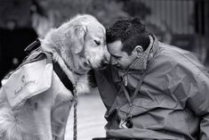 Human beings have long recognized dogs as the most faithful of companions, but could there be more to this relationship that meets the eye?