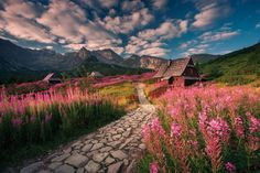 """Morning in the Tatra Mountains, Poland karolnienartowicz"""" Amazing Photography, Landscape Photography, Nature Photography, Travel Sights, Tatra Mountains, Beautiful Places In The World, Nature Images, National Geographic Photos, Kaito"""