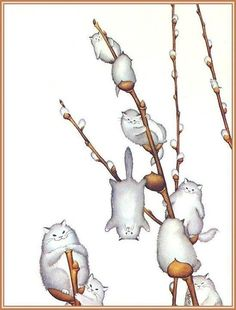 Willowy Kitties, by morreth on LJ cute whimsical illustration of willow catkins made of cats I Love Cats, Crazy Cats, Cute Cats, Funny Cats, Hilarious Animals, Arte Fashion, Illustration Art, Illustrations, Cat Drawing