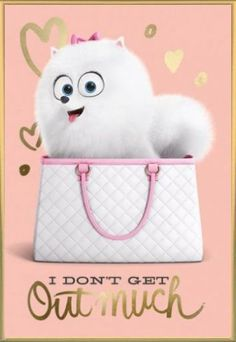 The Secret Life Of Pets Poster and Frame (Plastic) - I Do... https://www.amazon.ca/dp/B01F9UYAJC/ref=cm_sw_r_pi_dp_1CxLxb0Z57J11
