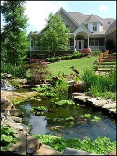 All about backyard landscaping ideas on a budget small layout patio low maintenance with pool large with dogs with firepit australia simple diy pavers for kids & with rocks. Large Backyard Landscaping, Landscaping With Rocks, Landscaping Ideas, Backyard Ideas, Patio Ideas, Backyard Layout, Firepit Ideas, Modern Backyard, House Landscape