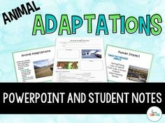 Animal Adaptations PowerPoint and Student Notes: The lesson teaches students about:   • Habitats • Camouflage • Mimicry • Various Examples of Animal Adaptations  • Endangered Animals  • Human Impact  • Extinction