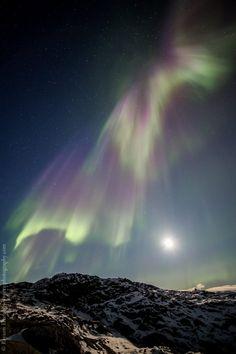 Auroras boreales y la Luna desde Groenlandia – El Universo Hoy