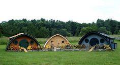 Chicken Homes - hobbit style.