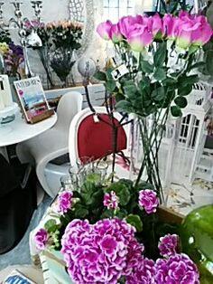 En la tienda de Javier Escudero