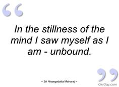 in the stillness of the mind i saw myself sri nisargadatta maharaj