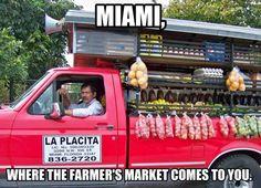 A Miami staple. Funny Spanish Jokes, Spanish Humor, Cuban Humor, Miami Quotes, Miami Girls, Miami Dade County, Cuban Recipes, You Funny, Jokes