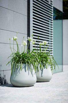 Sisustusidea Patio Plants, Garden Planters, Indoor Plants, Balcony Garden, Outdoor Pots, Outdoor Gardens, Back Gardens, Courtyard Landscaping, Landscaping Plants