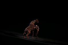 ROYAL TATTOO by Vener Cabrera on 500px