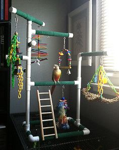 Verde-Médio De Mesa & cagetop Pássaro Pvc Academia Play Stand Com Escada & poleiros   Artigos para animais, Suprimentos para aves, Poleiros   eBay!