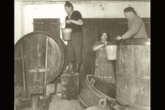 Italo Cescon winery, an early vintage.