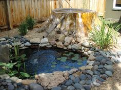 Stumped by a stump? Take inspiration from these homeowners who turned their stump into a Zen water feature